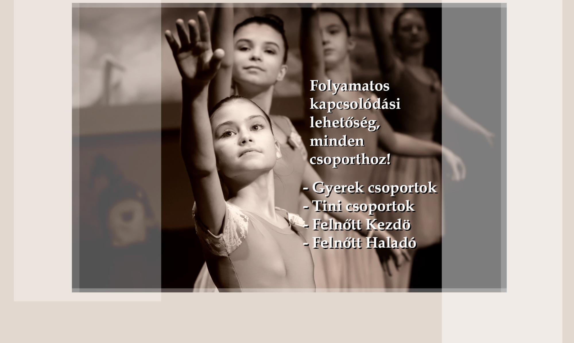 Aleszja és Vladimir Klasszikus Balett Táncstúdió